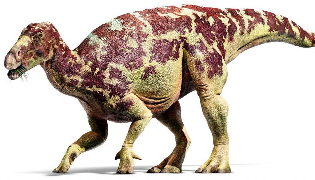 iguanodon-dinozor